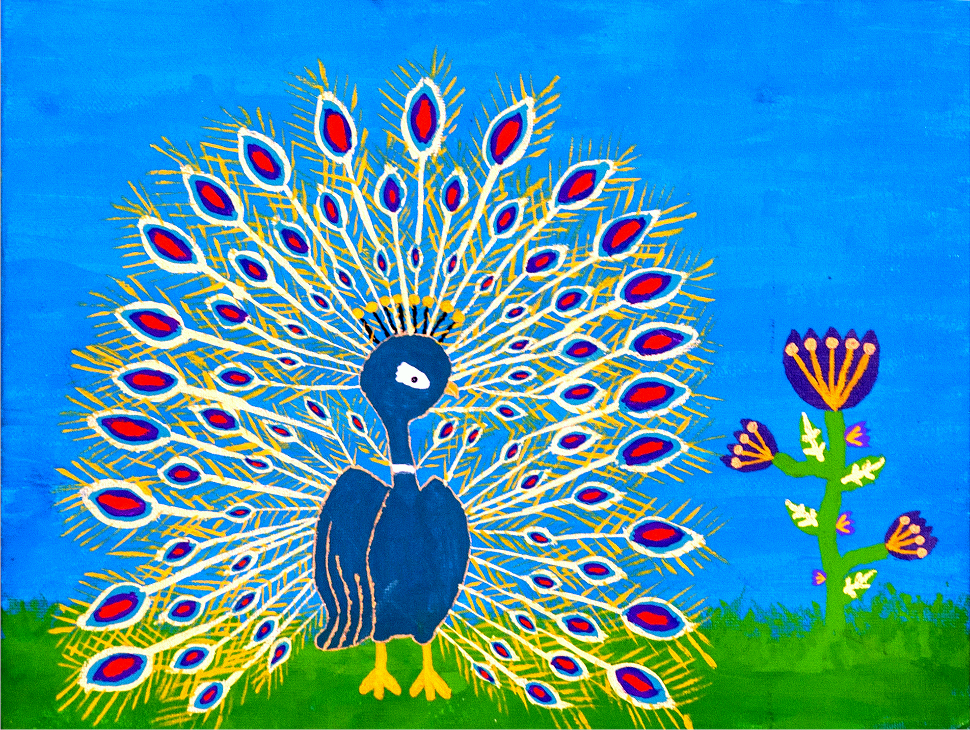 The Beautiful Peacock - Brenda Evelyn Hernández H. Age 11 (2013)