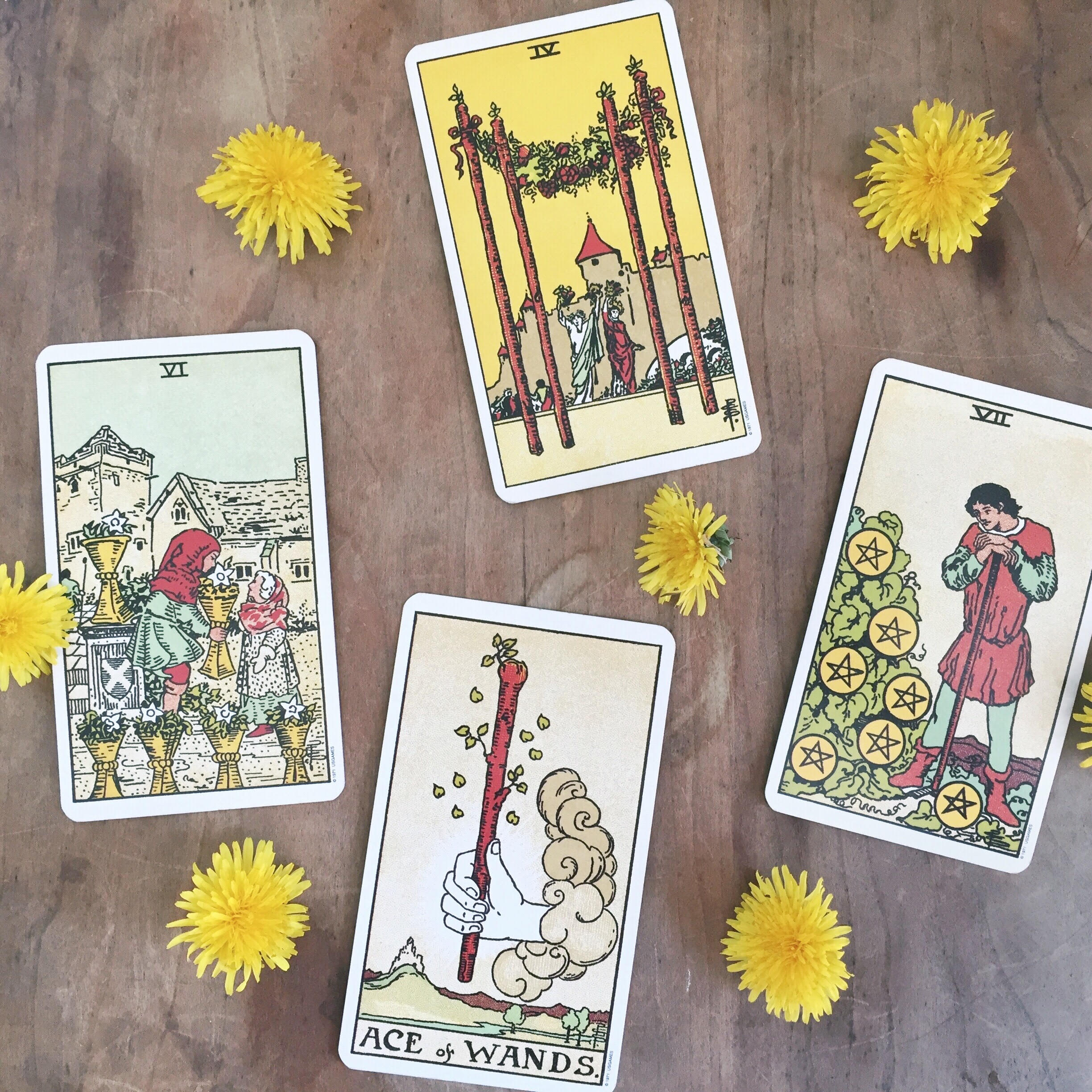 Rider Waite Tarot Card Reading with Flowers