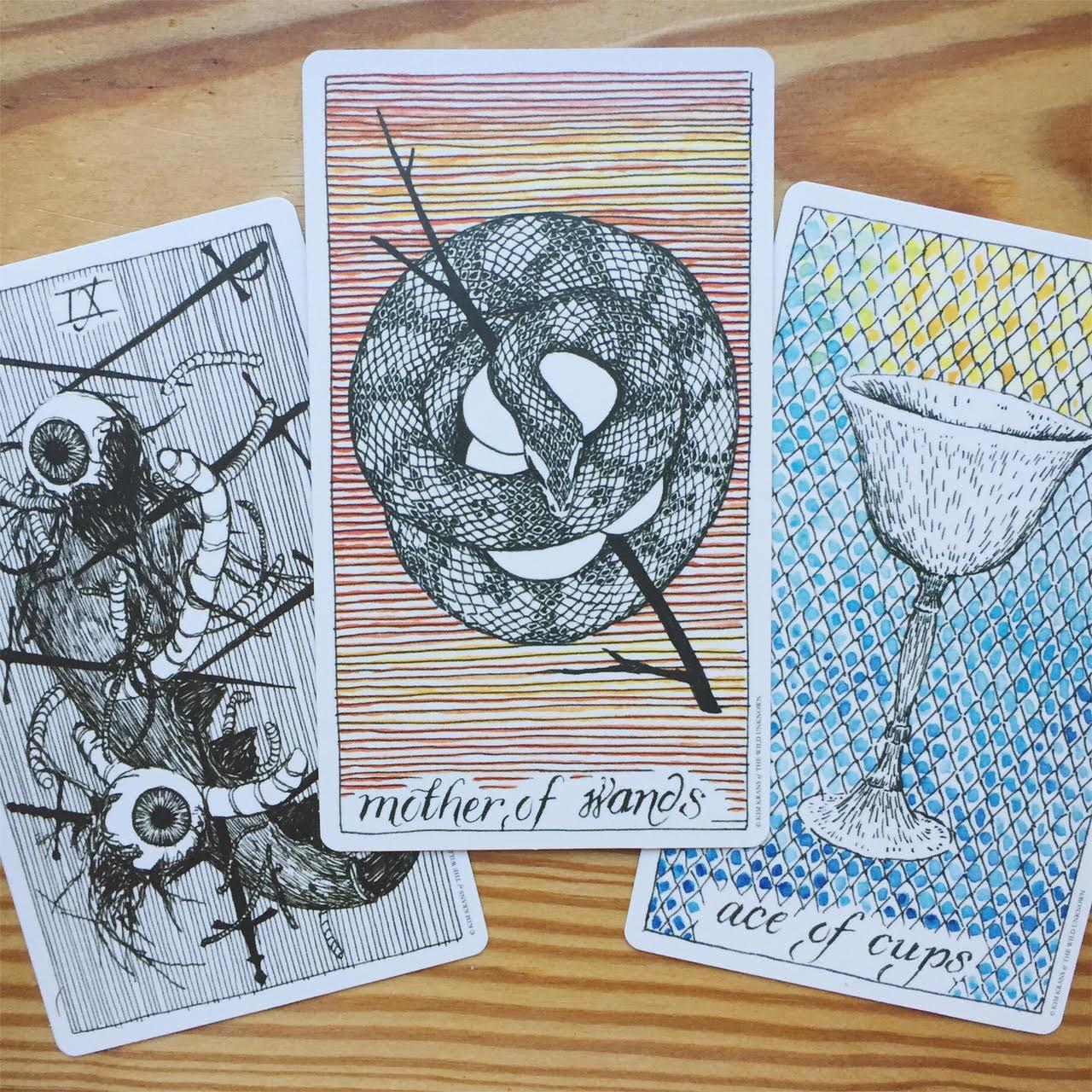 Tarot reading with wild unknown tarot