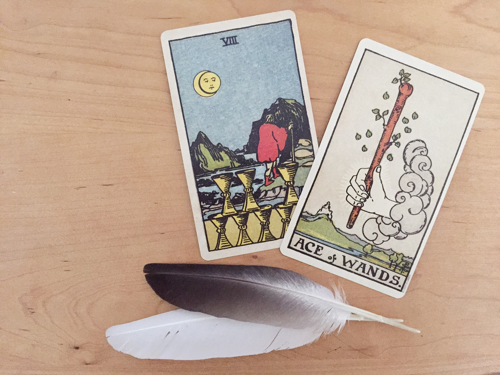 Feather Tarot Reading Rider Waite Ace of Wands Eight of Cups