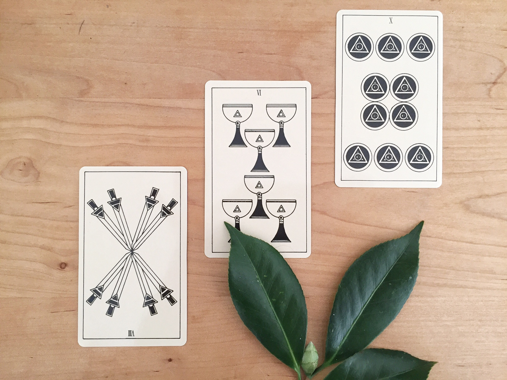 Black and white tarot spread with leaves