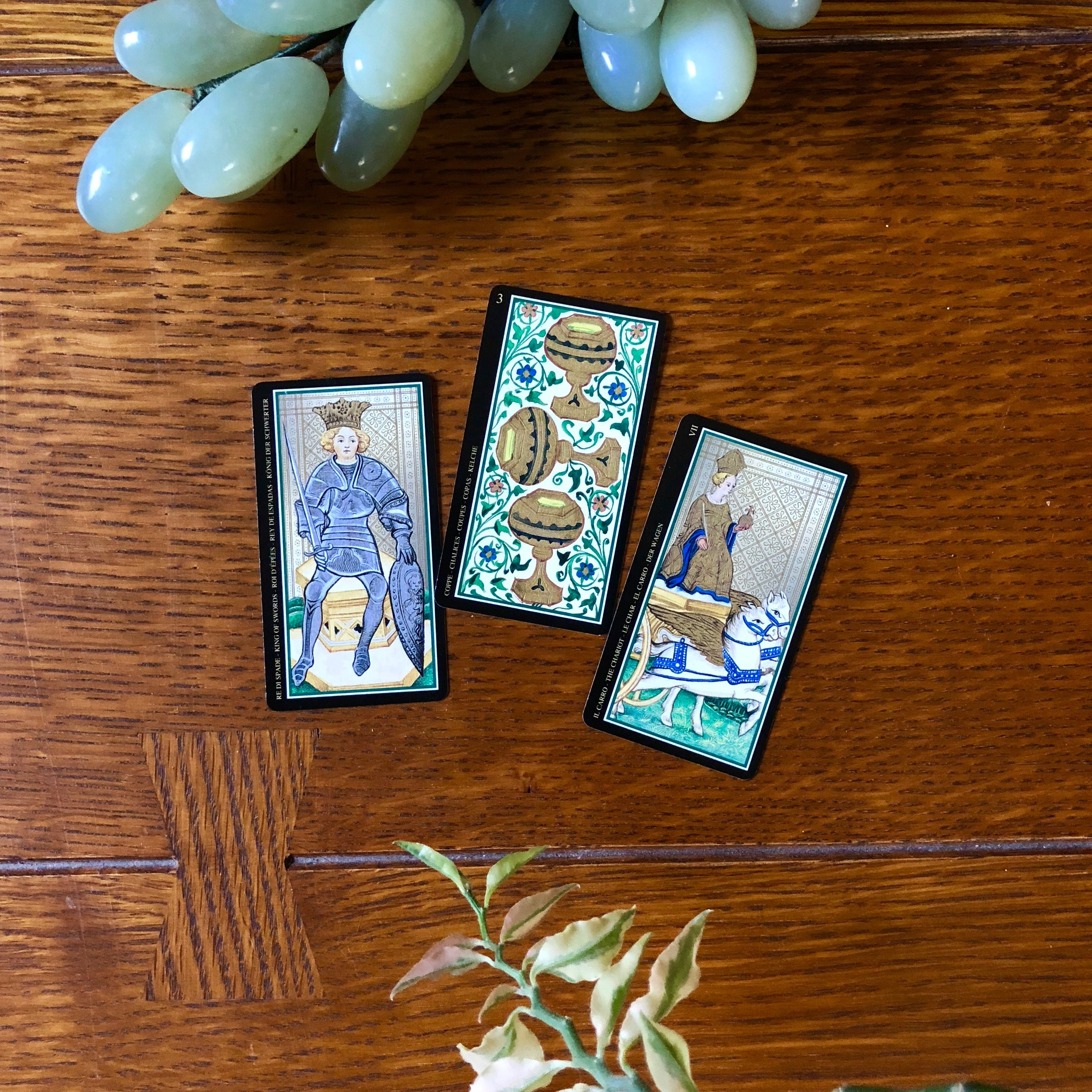 Visconti Tarot Reading with Three Cards and Plant