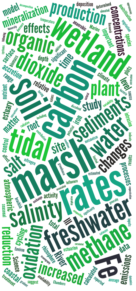 """Word cloud showing relative frequency of words that appear in my published articles and book chapters as of mid-2016 (excluding numbers and common words such as """"the,"""" """"and,"""" and """"in""""; created at tagxedo.com)."""