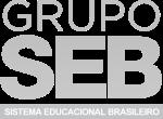 logo-grupo-seb.png