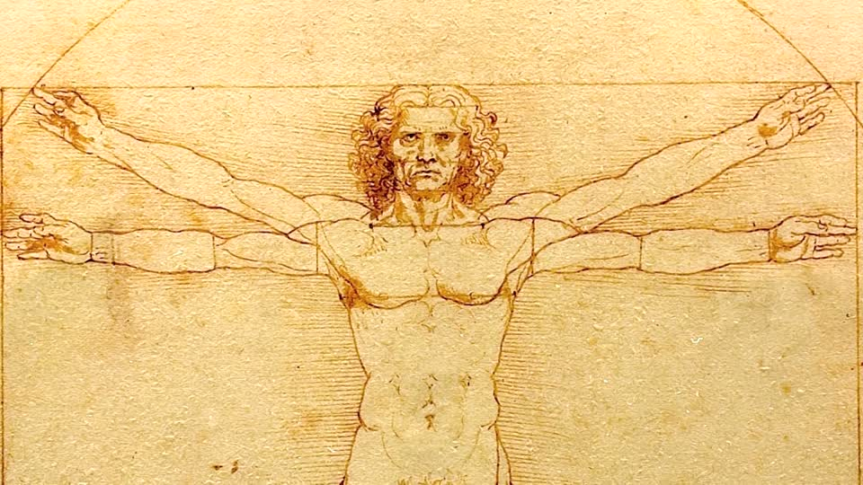 Leonardo Da Vinci's drawings compilation:Homme de Vitruve