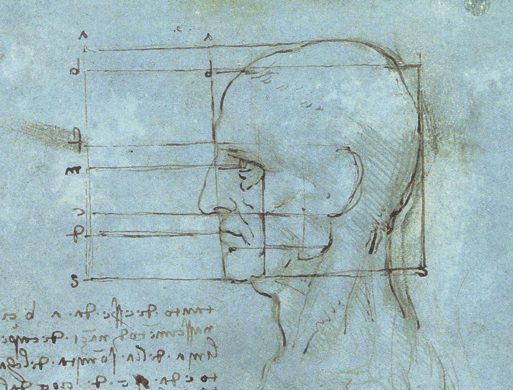 Proportions of the Head. (1488-9) Da Vinci.