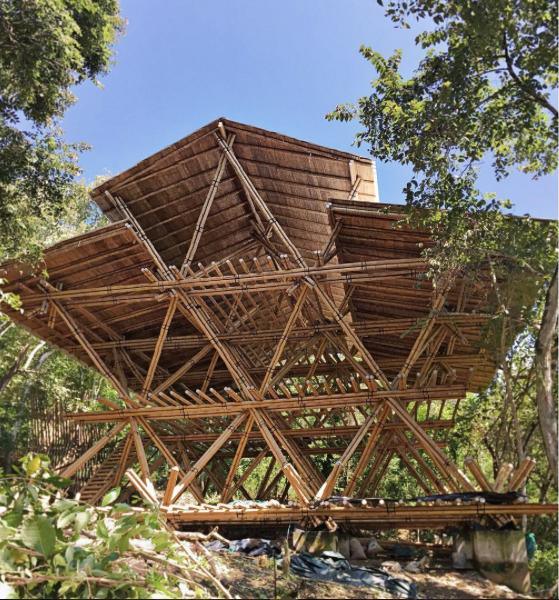 Wild Child Village, Ecuador