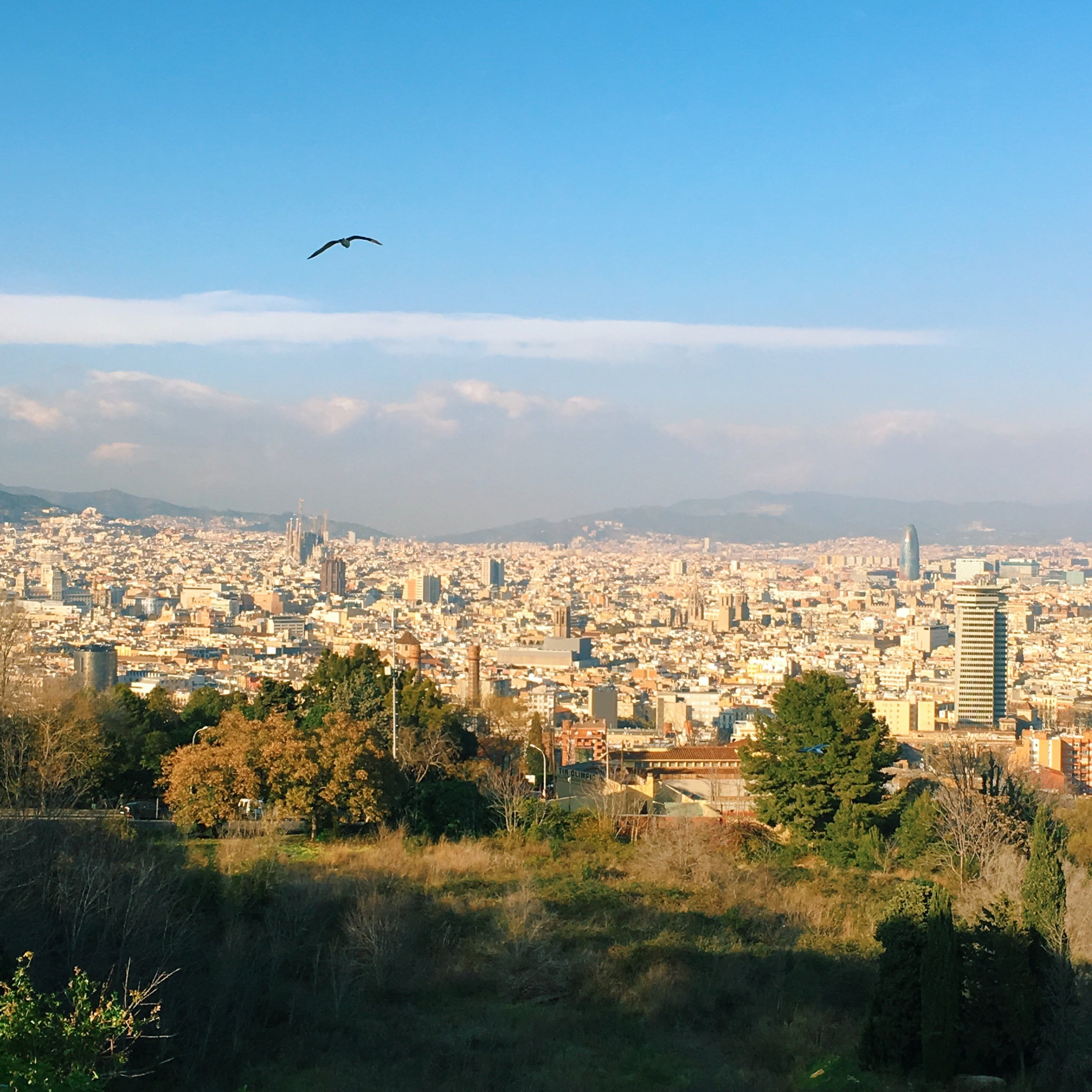 View of the city from Montjuic Castle.