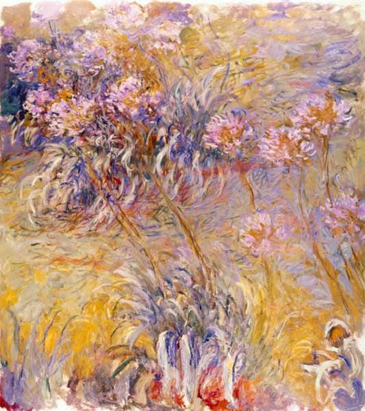 Agapanthus - Claude Monet (1914–1926