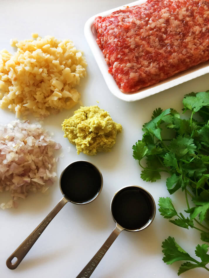 Ingredients for making an asian meatball recipe for the ketogenic diet. Cook this for your family.