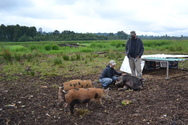 Urban Digs Farm | The Life Delicious