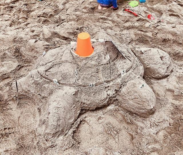 TELUS Turtle.jpg