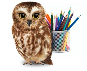TELUS owl.jpg