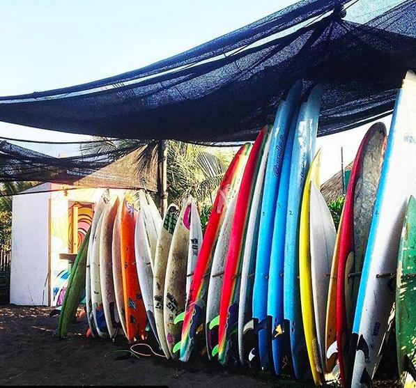 Plenty of surfboards to rent
