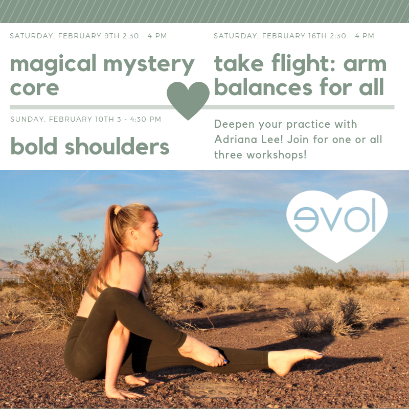 Take Flight! Arm Balances for All with Adriana Lee