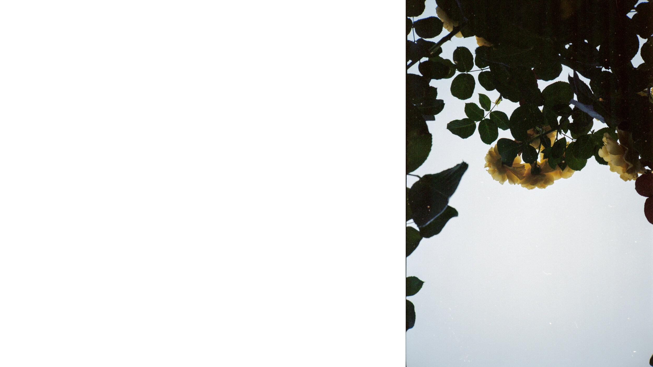 pics-2-6.jpg