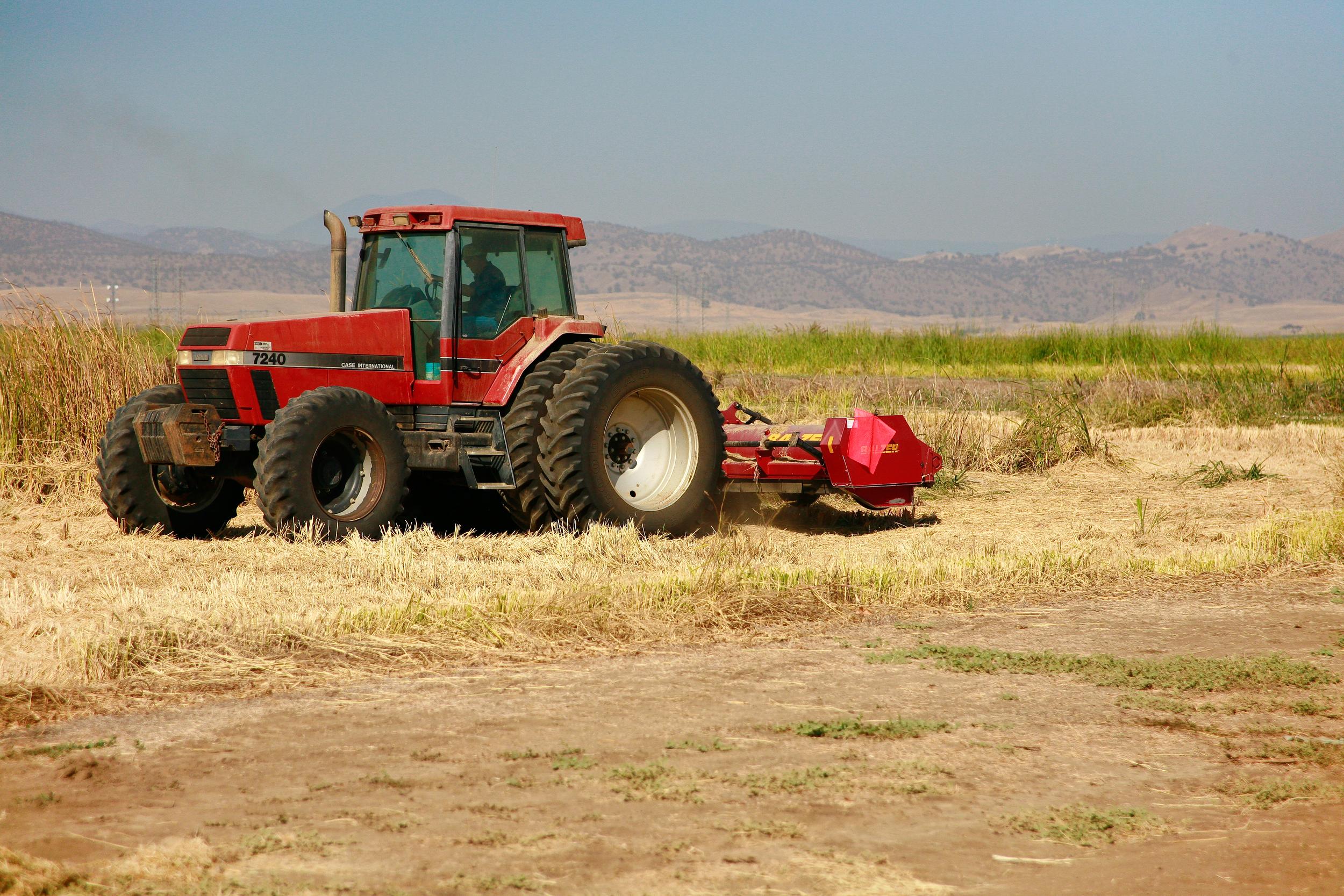final farming 18-1.jpg