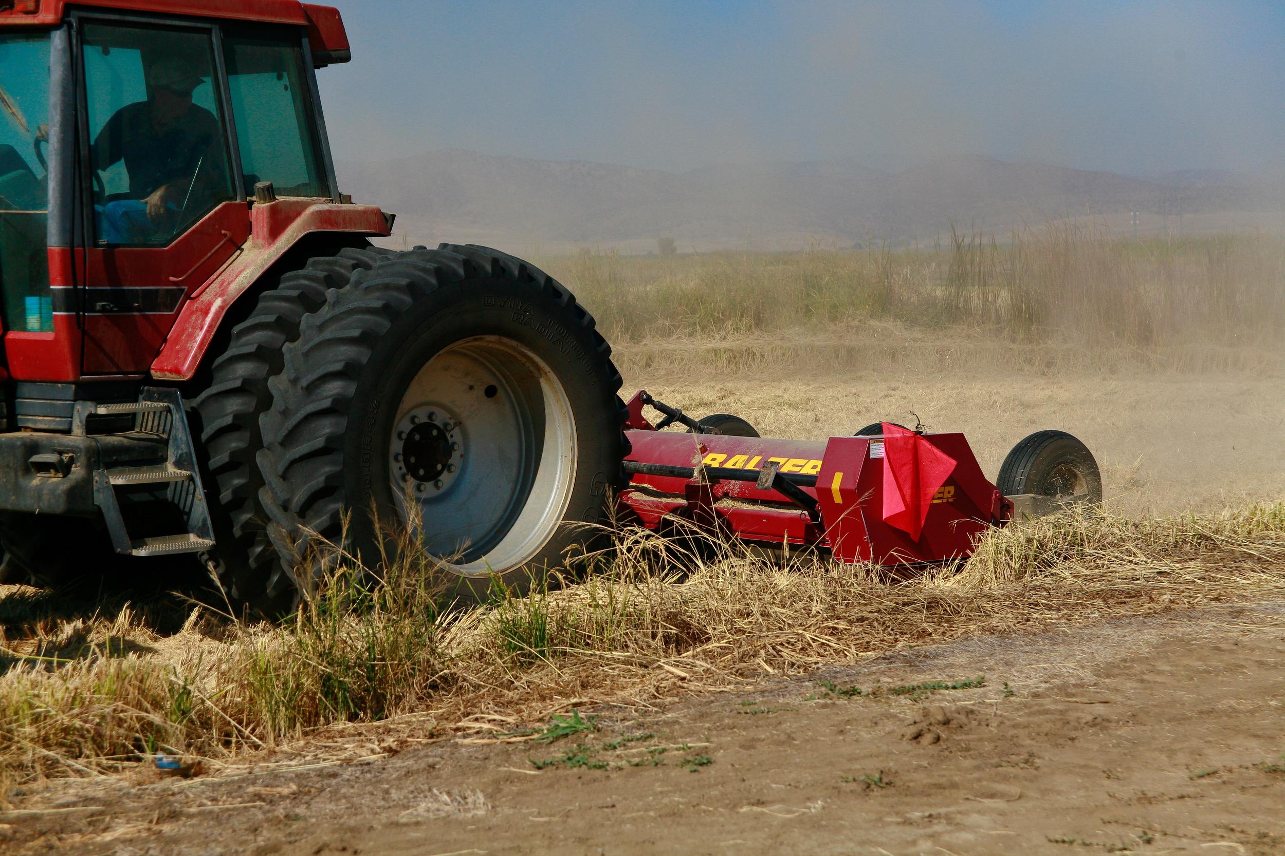 final farming 21-1.jpg
