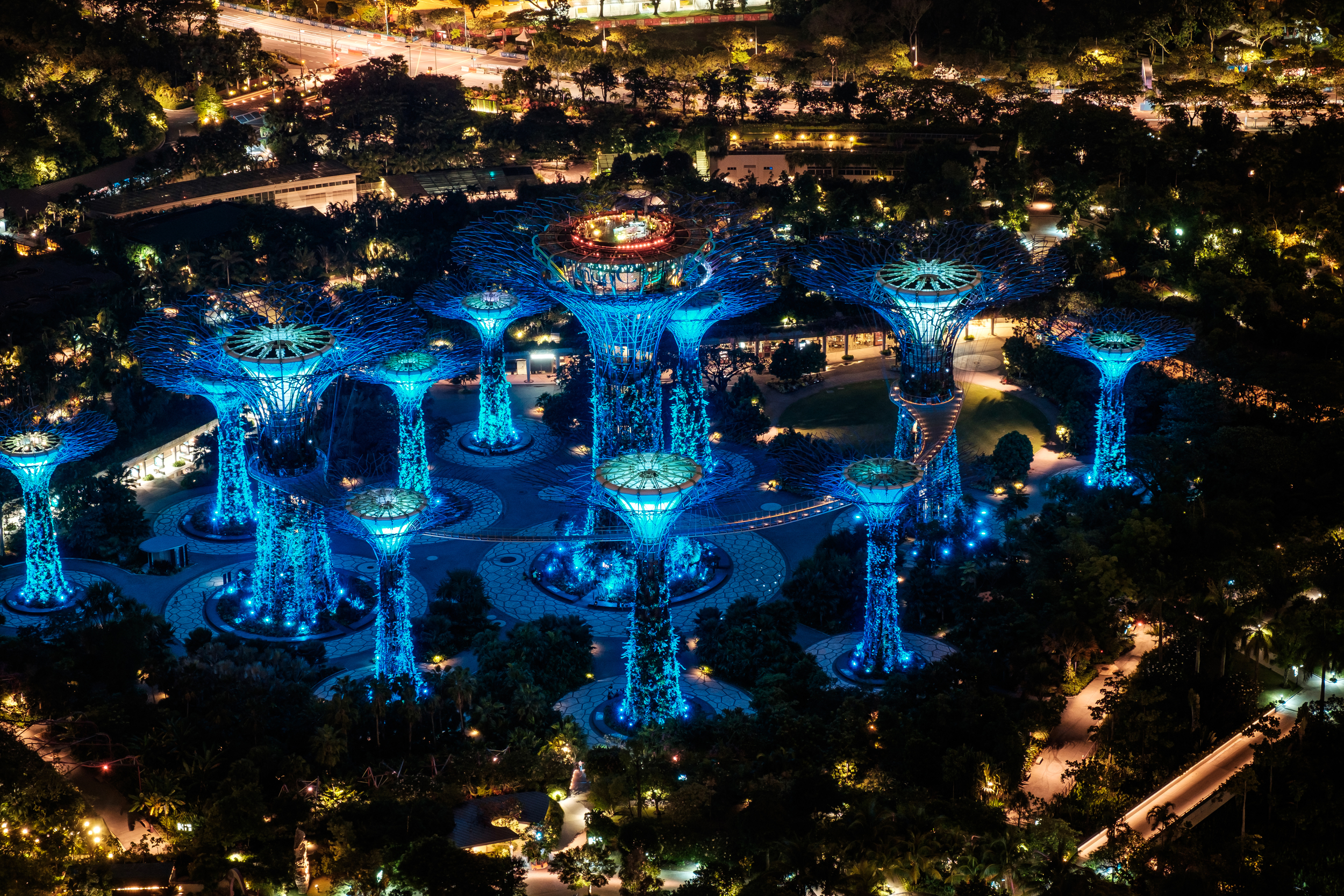 Spectacular Supertree Grove in Gardens by the Bay