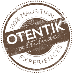 attitude hotels otentik_logo.png