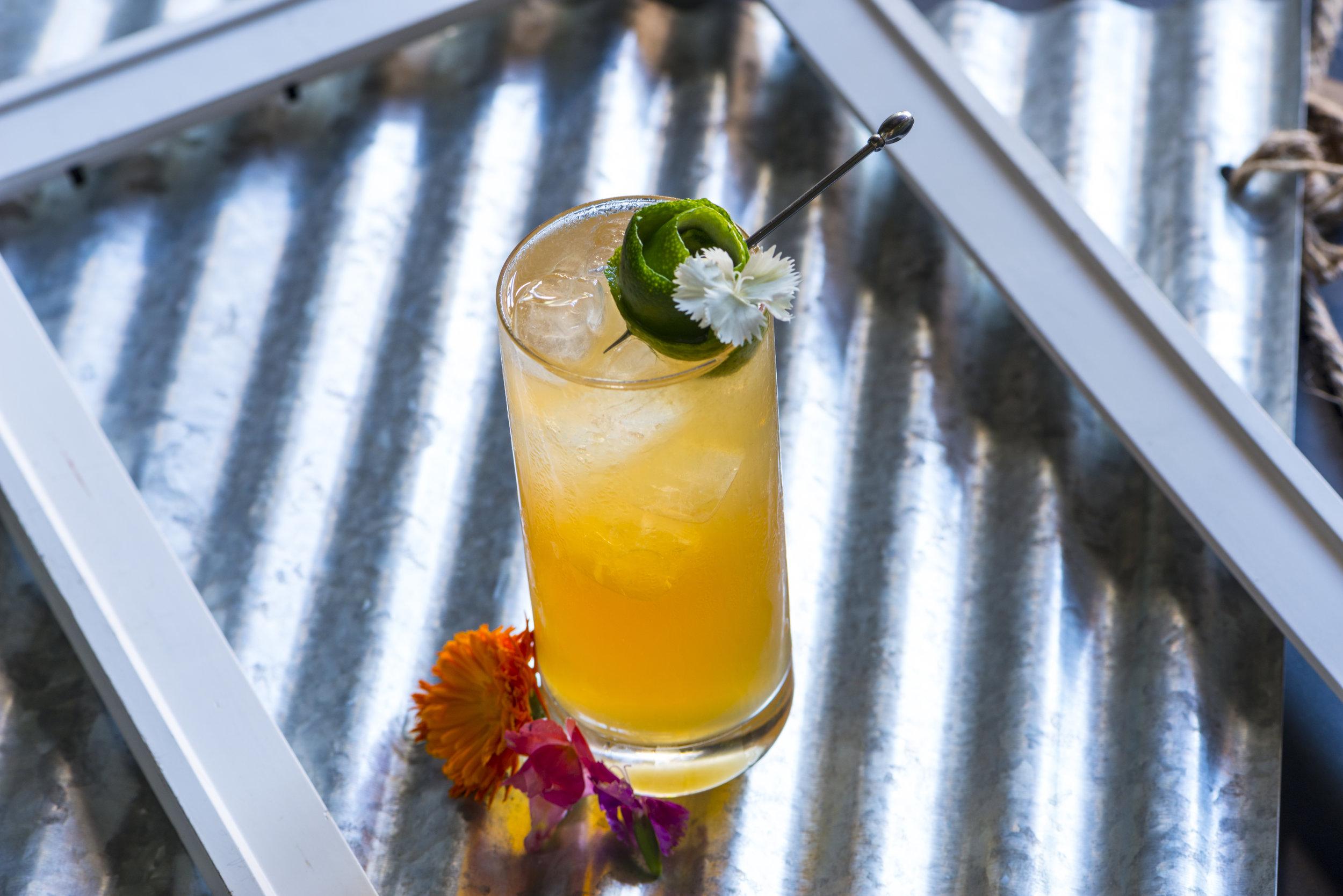 Cocktails-101.jpg