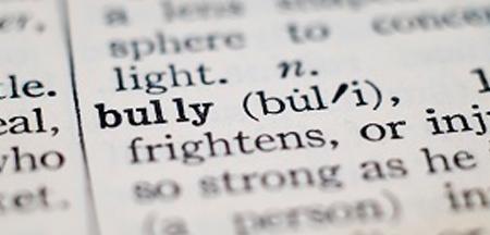 slider2-bully.jpg