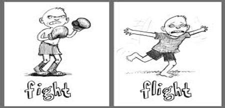 slider2-fight-flight.jpg