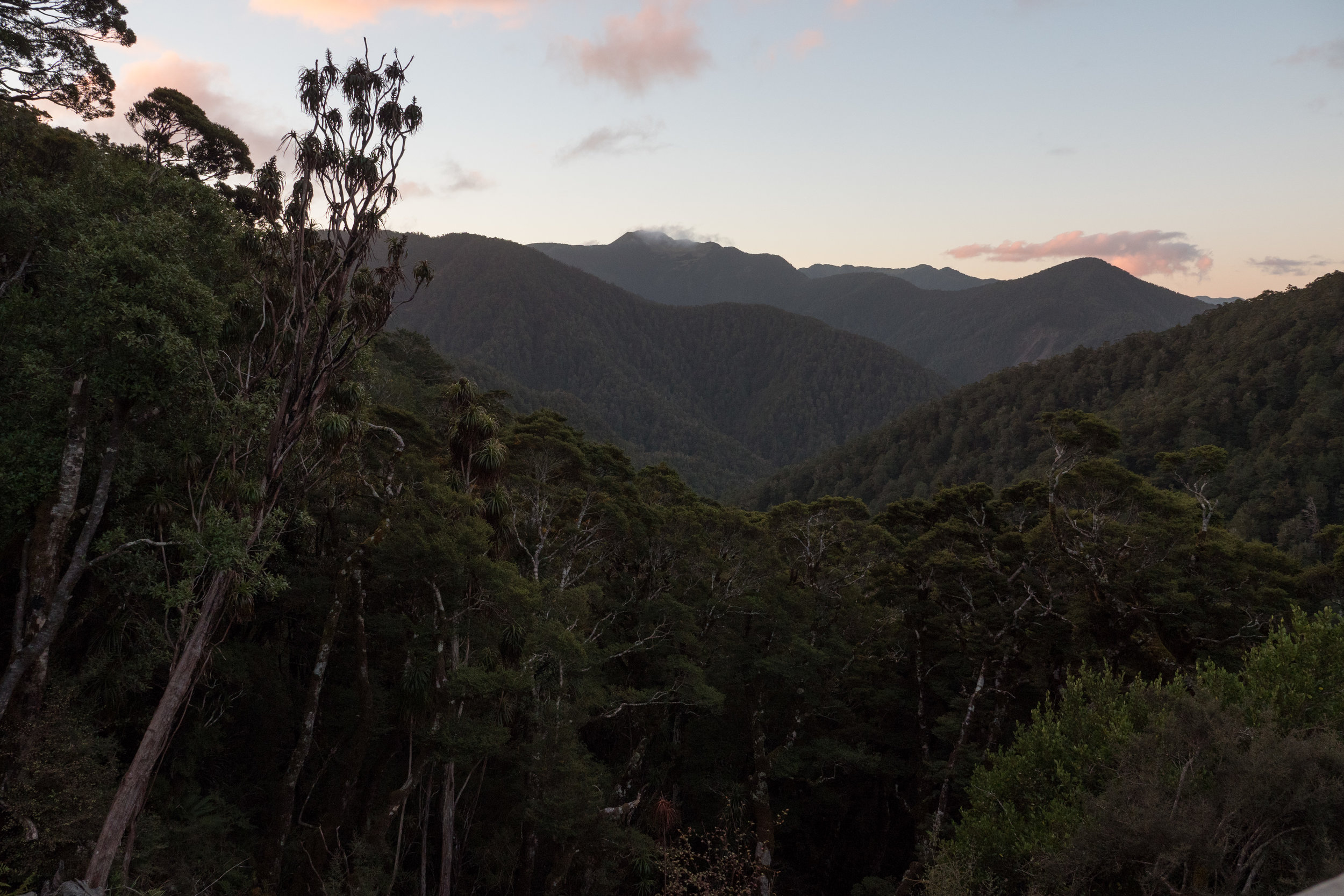 The View from Lyell Saddle Hut
