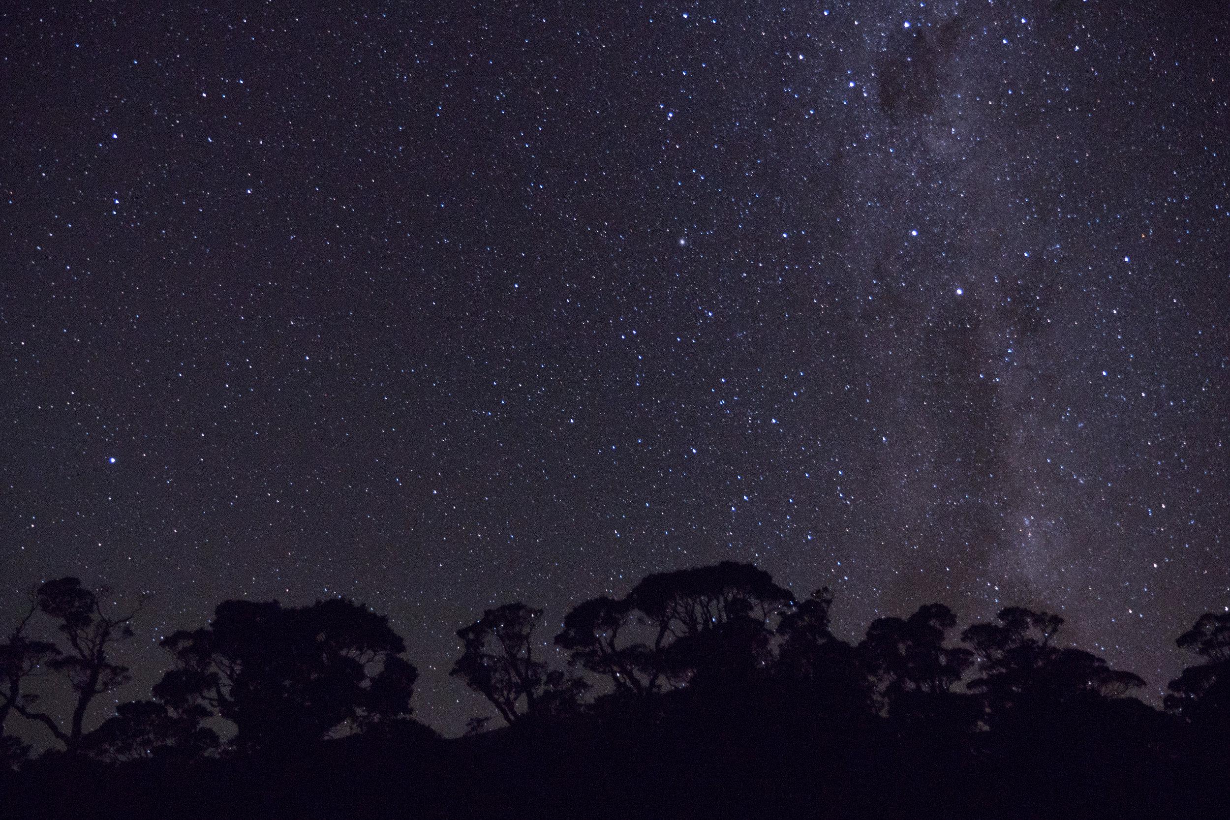 Stars, Lyell Saddle Hut