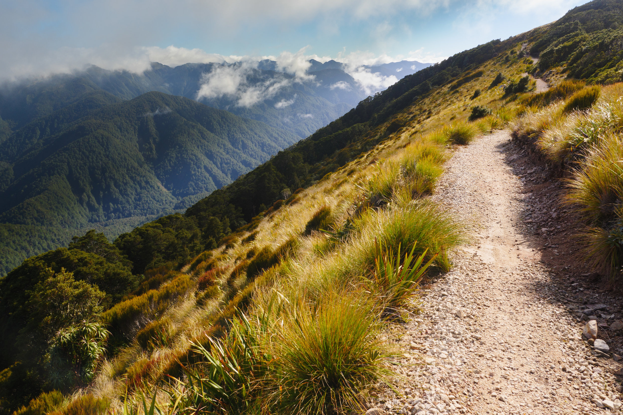 The trail at the top of the ridge above Lyell Saddle Hut