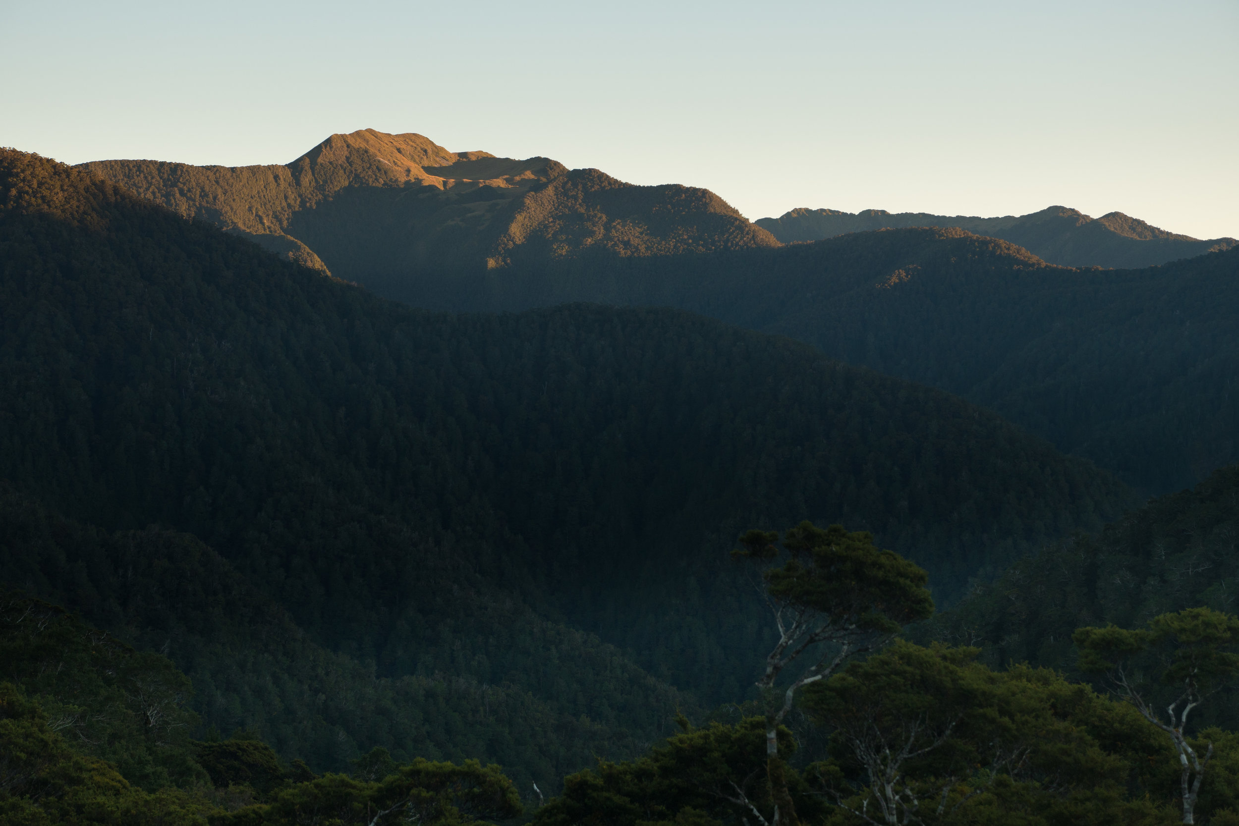 View from Lyell Hut