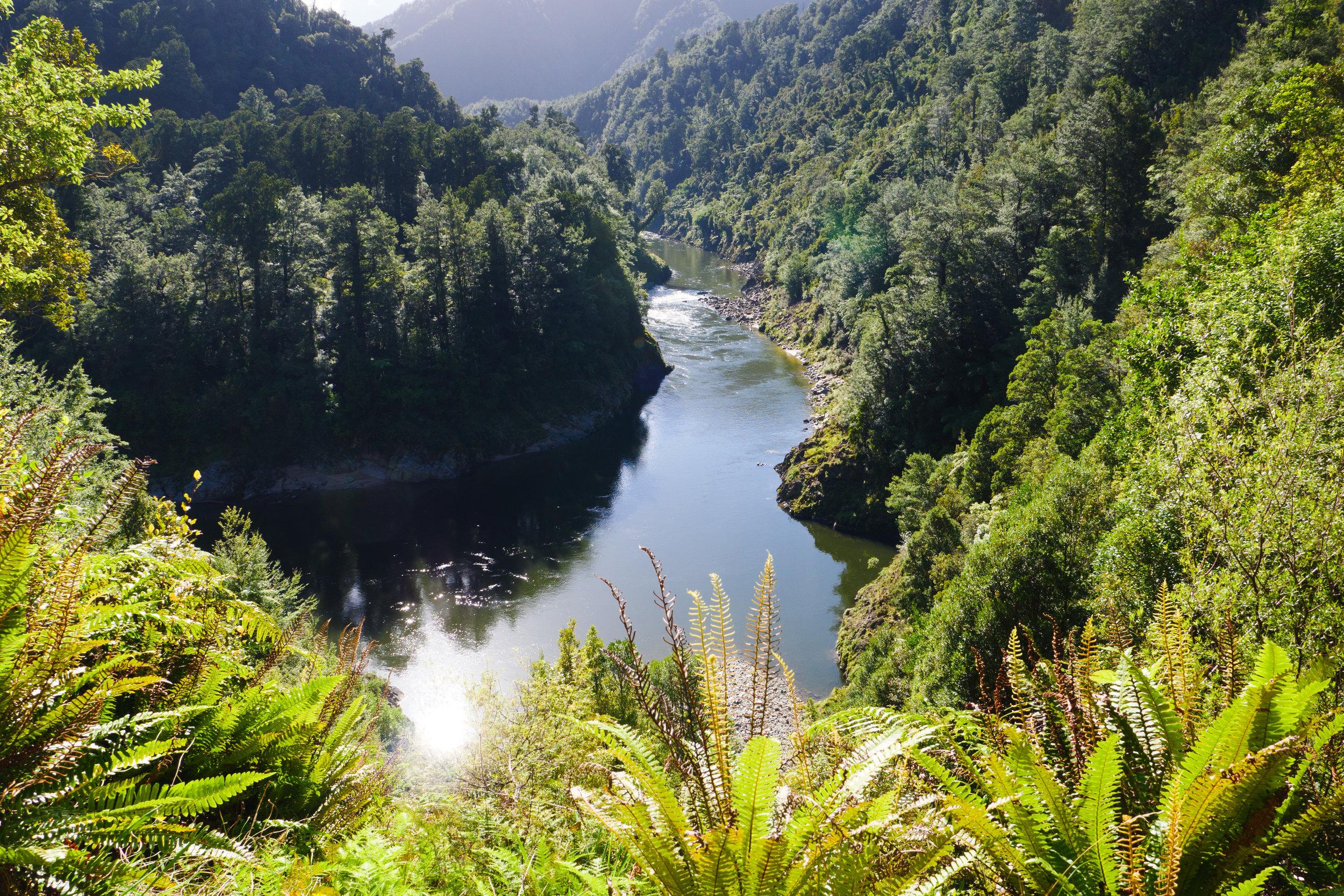 New Zealand 2018 Old Ghost Road Ben Howe-163.jpg