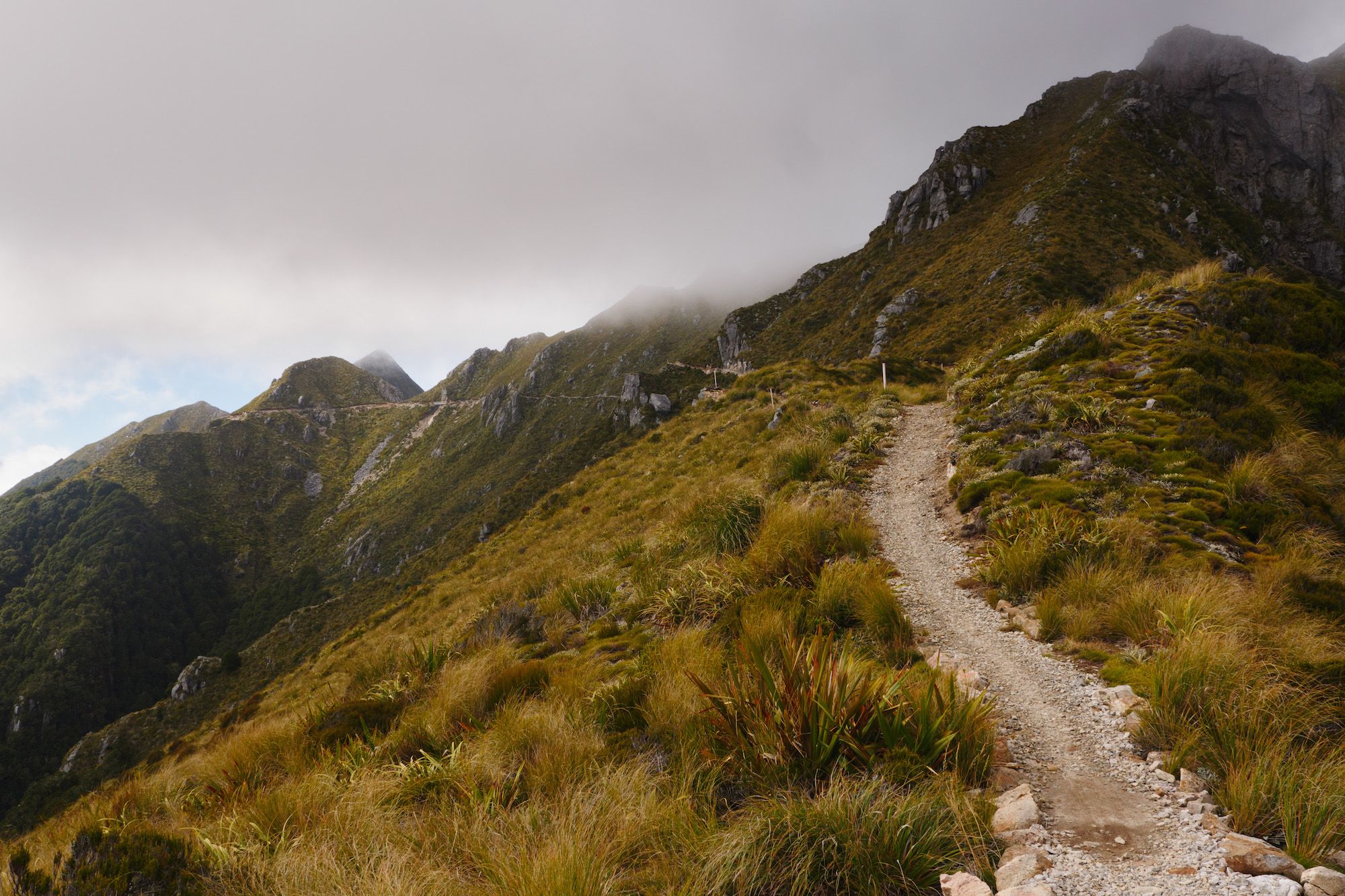 The trail towards the highest point - between Lyell Hut and Ghost Lake Hut