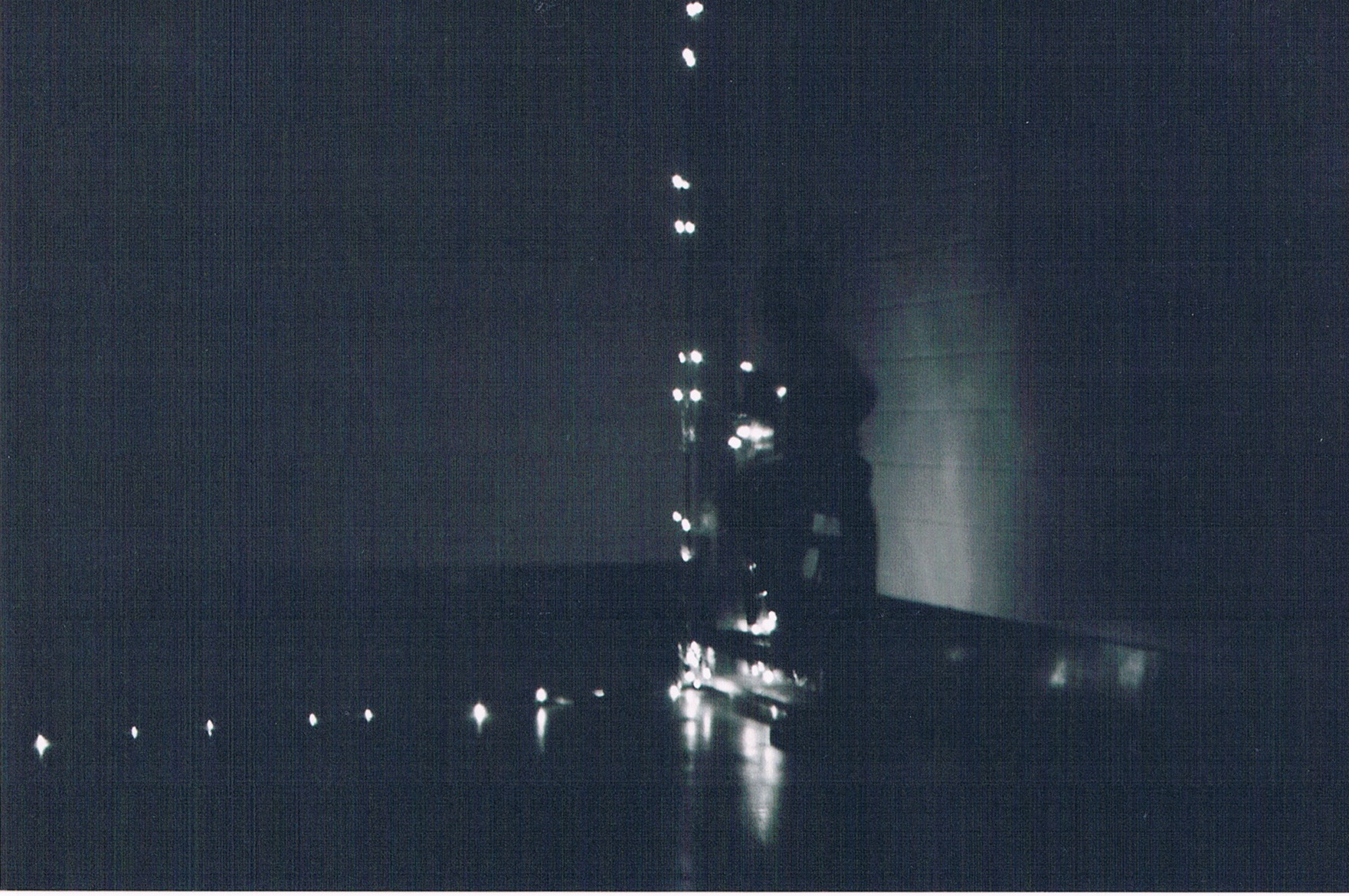 valie lights 1.jpeg