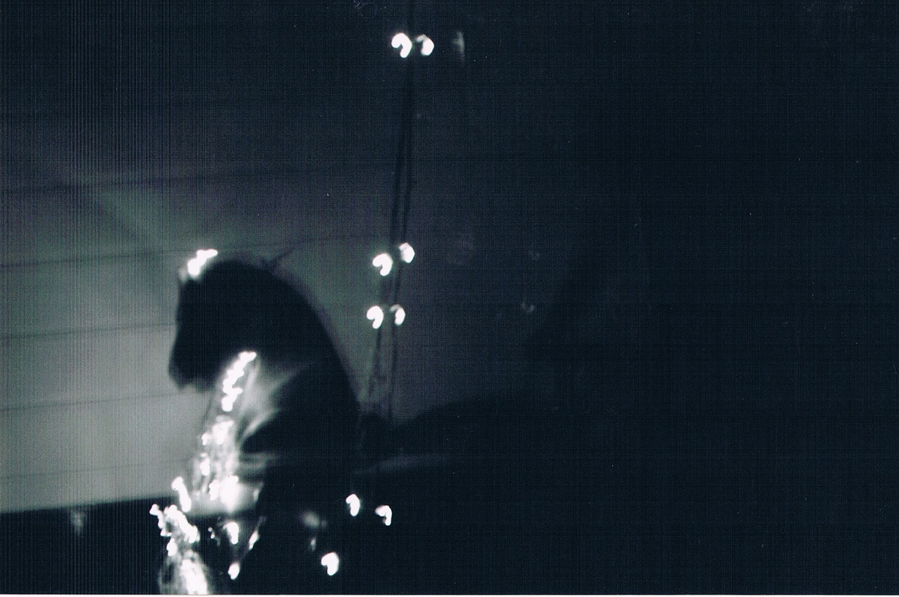 valie lights 9.jpeg