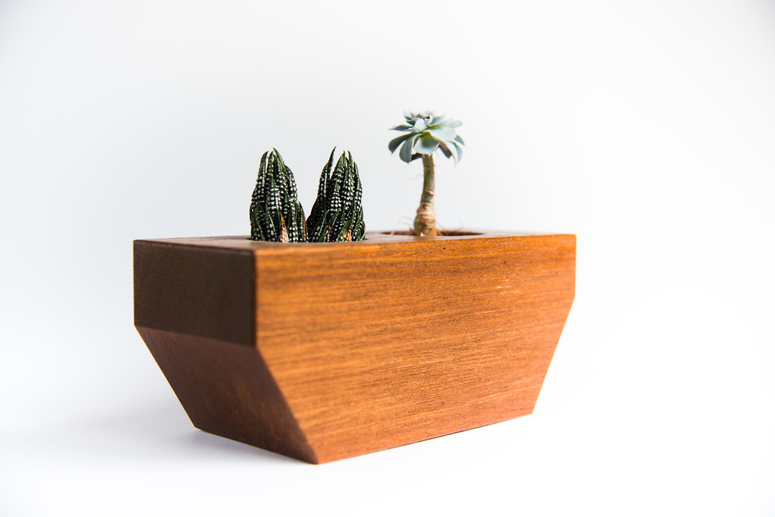Mahogany Succulent Planter