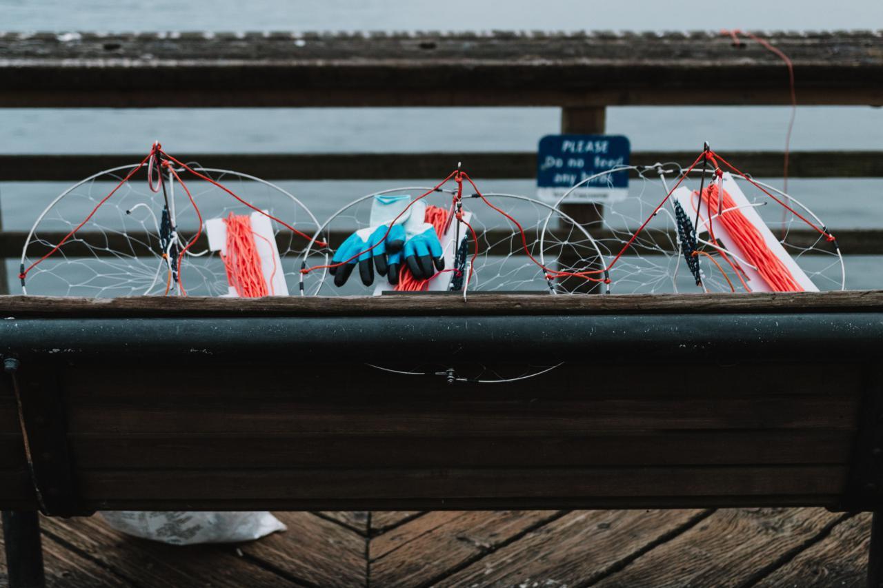 Crab-fishing-Ambleside-Park-6.jpg