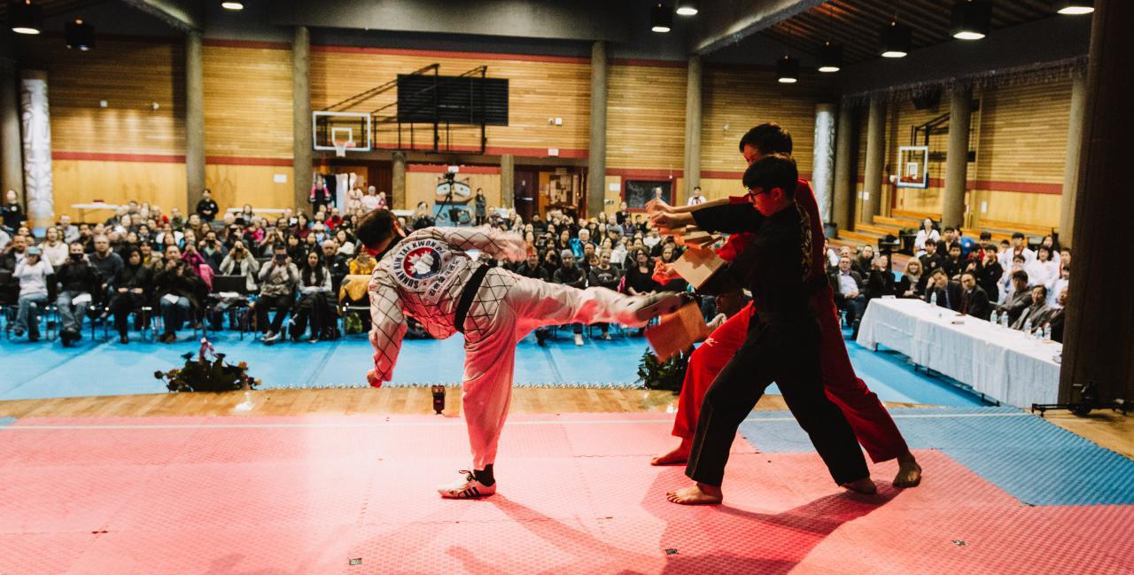 Sunny-Kim-Taekwondo-14.jpg