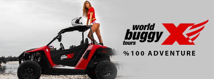World Buggy Tours