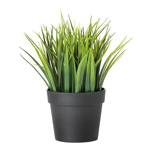 Fejka Pot Plant from  IKEA  £3