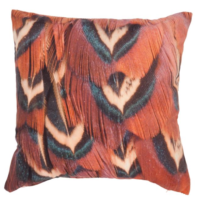 Pheasant Feather Cushion , The Range £5.99