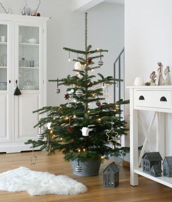 Scandinavian tree from  So Lebich