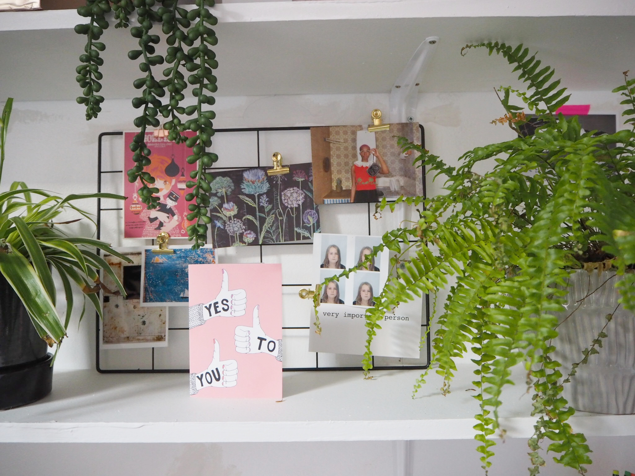 Countless opportunities for shelfie styling.  And another place for plants to die.