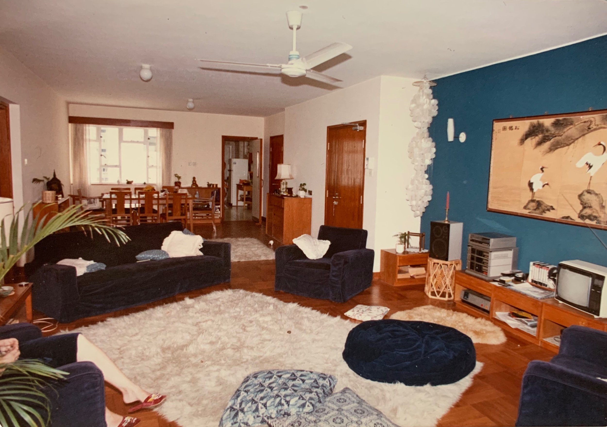 Our Hong Kong 80s home. Bamboo, cord sofa, palm tree, flokati, sheepskin, shell light and all mod cons including TV, stereo stack and VTR.