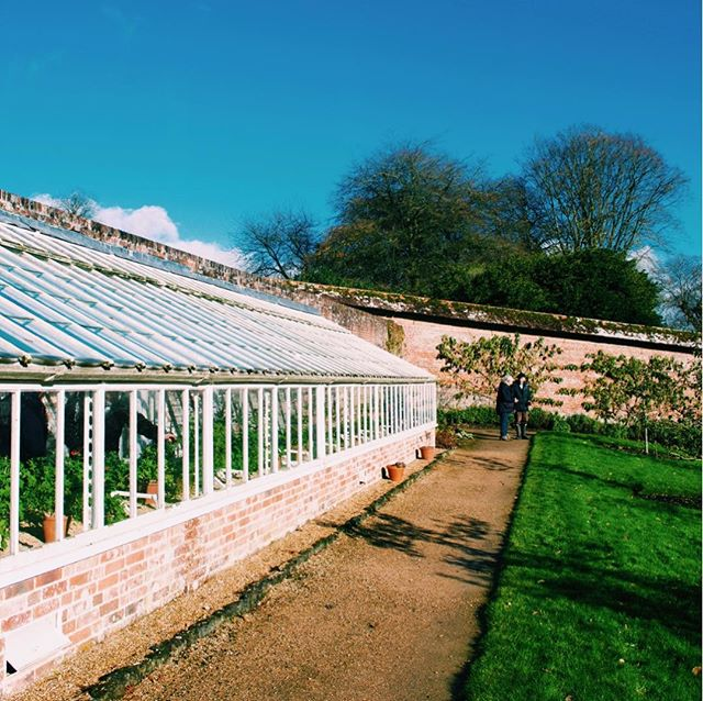 Photo-a-day #25 - Blue skies, green grass and a greenhouse full of beautiful flowers • • • #photoaday #stourhead #bluesky #greengreengrassofhome #nature #ipreview @preview.app