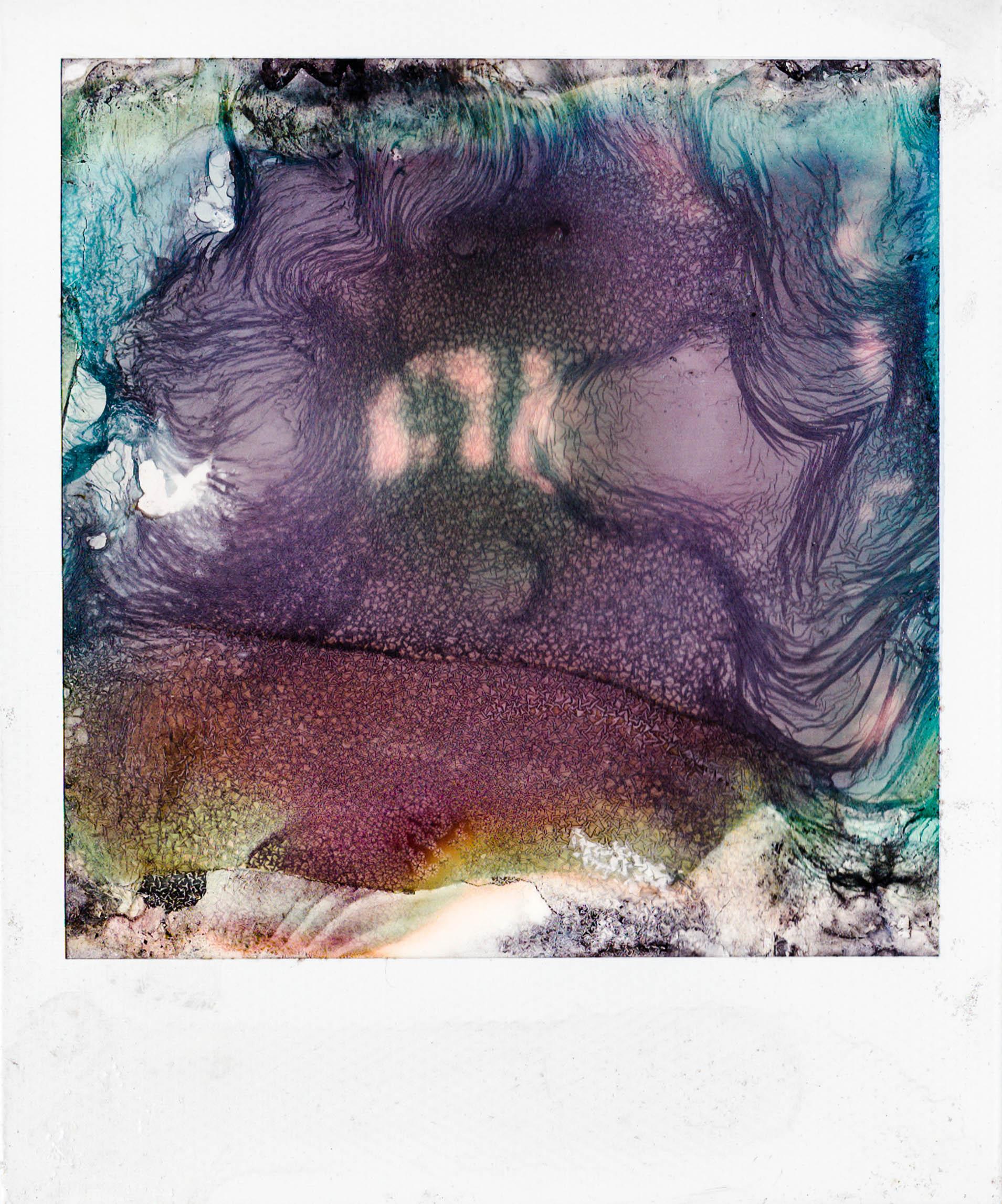 polaroid5 copy.jpg