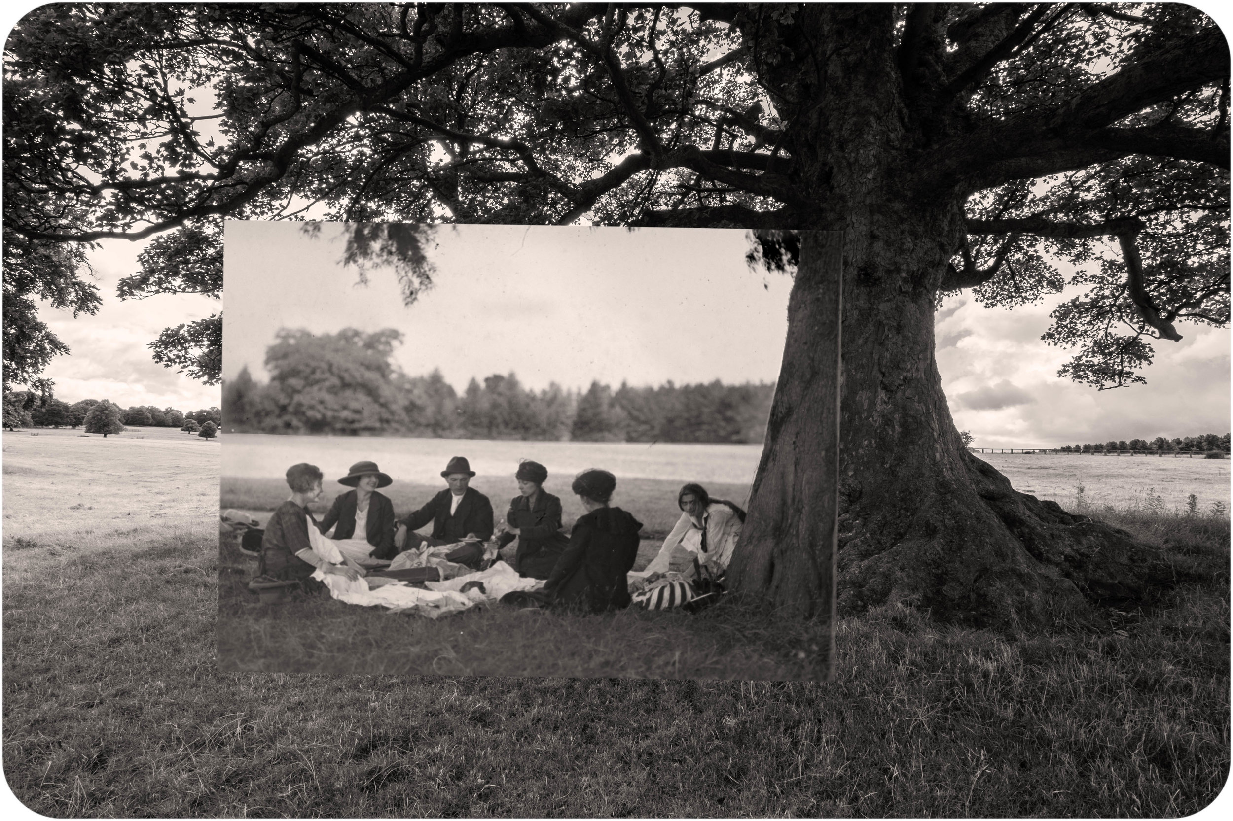 Summer Picnic. Wakefield Park. Yorkshire