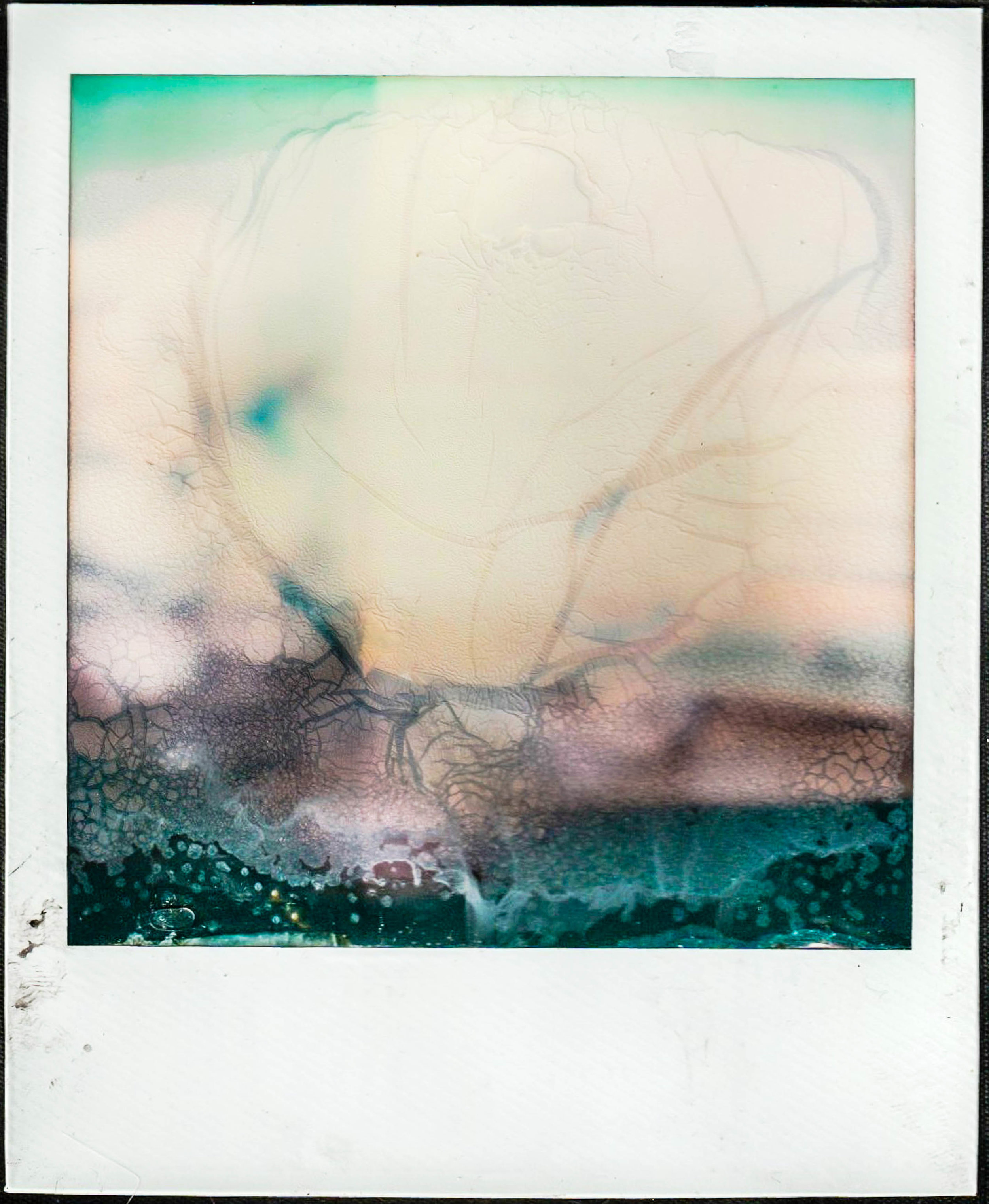 polaroid13 bcopy.jpg