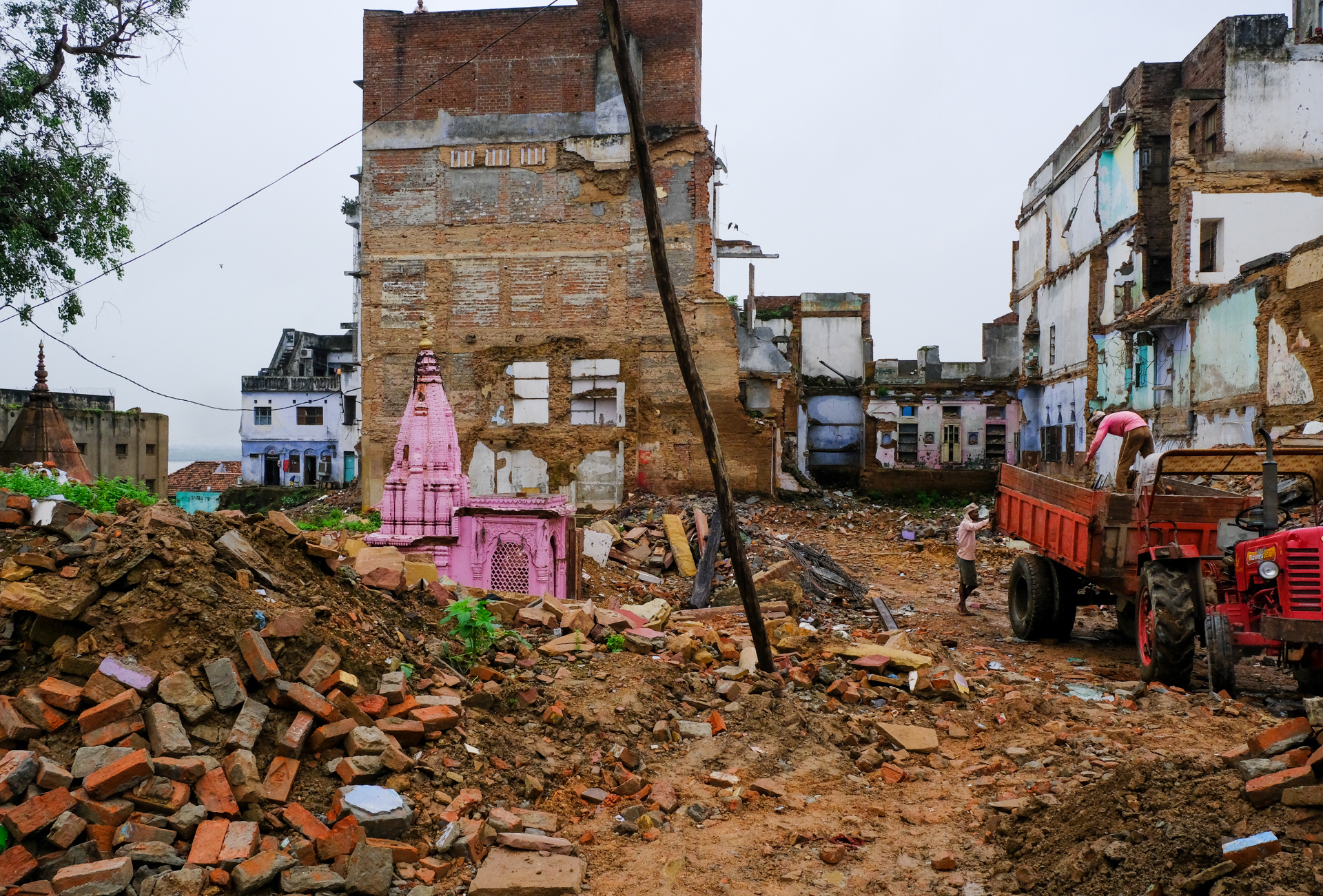 Revealed - a tiny pink temple that had been hidden for hundreds and hundreds of years.