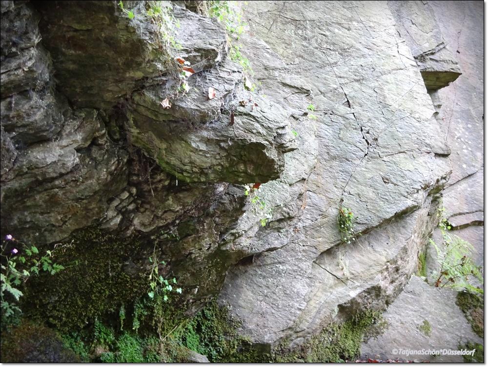 neandertal57-20160917.JPG